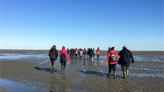 All day field trip to the UNESCO World Heritage Wadden Sea National Park as part of the class
